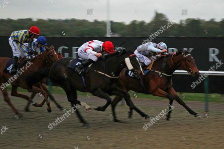 Rum Swizzle 1st (far) beating Inke 1st The Racing welfare 24 Hour Support Line 08006300443 Fillies' Handicap Stakes at Lingfield O: The Nigel Bennett Partnership T: Harry Dunlop J: Luke Morris