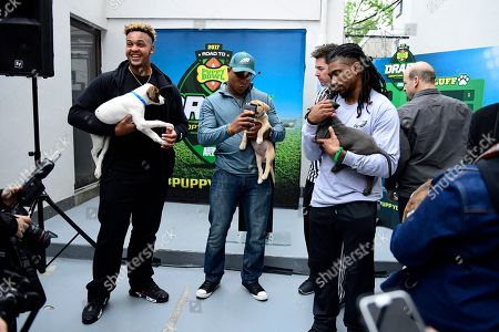 """Dion Dawkins, Terrell Watson IMAGE DISTRIBUTED FOR DISCOVERY COMMUNICATIONS - Dion Dawkins, recent offensive tackle for the Temple Owls and NFL draft prospect, from left, Terrell Watson, Philadelphia Eagles running back, and Ron Brooks, Philadelphia Eagles cornerback, look at puppies at the Morris Animal Refuge in Philadelphia. Animal Planet and Morris Animal Refuge hosted an adoption event to the public with a mock NFL """"draft."""" With the help from over 150 attendees, current Philadelphia Eagles NFL players evaluated and chose their team lineup amongst adoptable animals. All 14 puppies were adopted"""