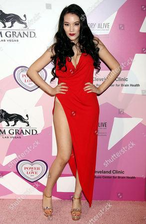 Editorial photo of Power Of Love Gala, Arrivals, MGM Grand Garden Arena, Las Vegas, USA - 27 Apr 2017