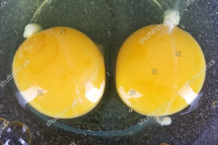 eggs in sucrose solution lab Ib egg - osmosis lab the purpose of this activity is to give you practice on your first ib lab it will also teach students about osmosis and the effects of hypotonic, hypertonic, and isotonic solutions on animal cells.