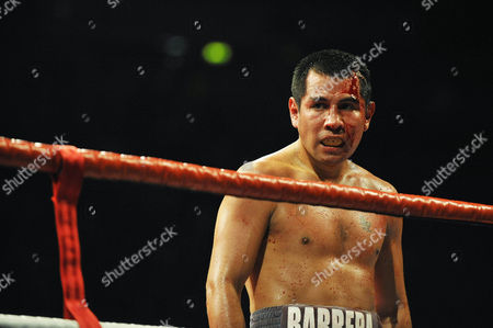 Editorial photo of Amir Khan v Marco Antonio Barrera, Lightweight Boxing Match at the M.E.N, Manchester, Britain  - 14 Mar 2009