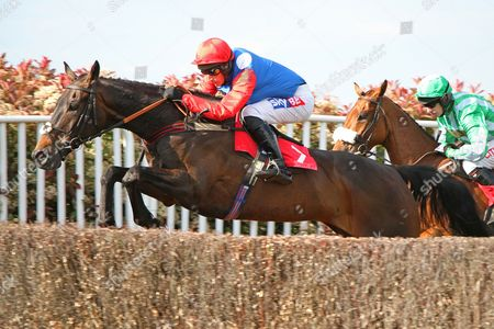 Brother Tedd in The bet365 Josh Gifford Novices' H'cap Steeple Chase at Sandown Park