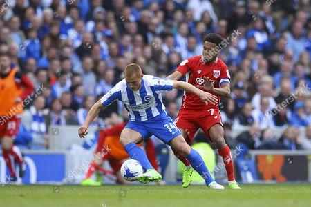 Korey Smith of Bristol City puts Steve Sidwell of Brighton & Hove Albion under pressure