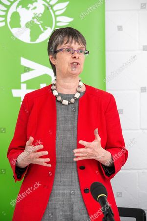 Molly Scott Cato MEP (candidate for Bristol West). The Green Party launch their Brexit policy.