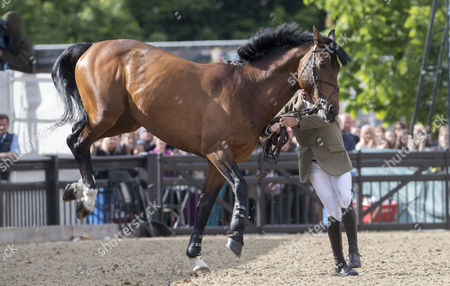 Editorial picture of Royal Windsor Horse Show, UK - 14 May 2017