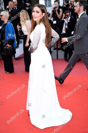 Editorial photo of 'The Meyerowitz Stories' premiere, 70th Cannes Film Festival, France - 21 May 2017
