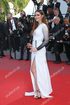 """Editorial picture of CANNES: """"THE MEYEROWITZ STORYS"""" Premiere, Cannes, France - 21 May 2017"""