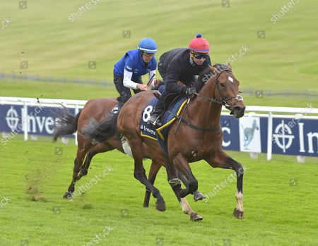 (No 8) Best of Days, ridden by Michael Hills and (L) Kidmenever, ridden by Willie Ryan, on the gallops at Epsom Racecourse on Tuesday 23rd June 2017, as preparation for The Derby Meeting which will be run on 2nd and 3rd June.