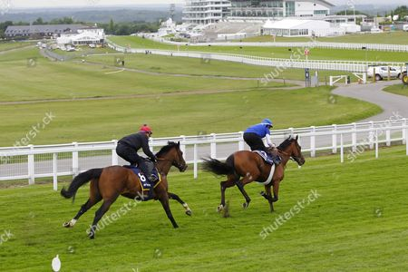Best Of Days and Michael Hills [red cap] galloping around Epsom with a companion at the Breakfast With The Stars event ahead of the Derby.