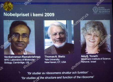 Winners of the 2009 Chemistry Nobel Prize Winners (pictured on Screen- L-r) Venkatraman Ramakrishnan and Thomas Steitz From the Usa and Israeli Ada Yonath For 'Studies of the Structure of the Ribosome' During the Annoucement of the Awards at the Royal Academy of Sciences in Stockholm Sweden 07 October 2009 Sweden Stockholm