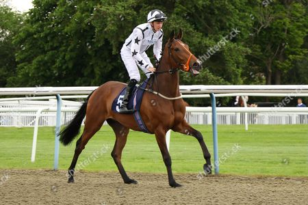 Stock Photo of GLORVINA ridden by Josh Doyle in The bet365 Maiden Auction Stakes at Lingfield