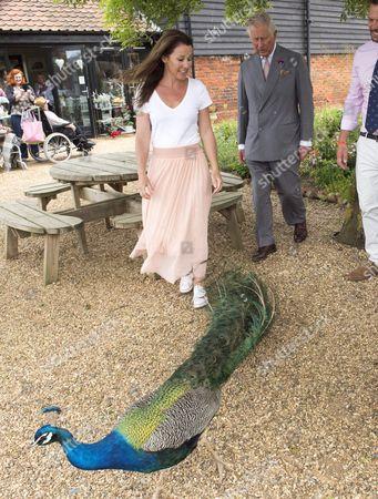 Editorial photo of Prince Charles visit to Jimmy's Farm, Ipswich, UK - 05 Jun 2017