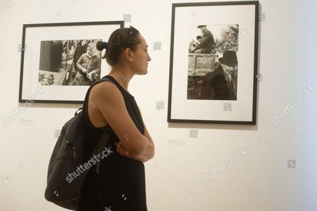 A visitor looks at images during a press preview of the exhibition showcasing the photos taken by American photographer Elliott Erwitt during his visit to Hungary in 1964 in Mai Mano House of Hungarian Photographers in Budapest, Hungary, 15 June 2017.