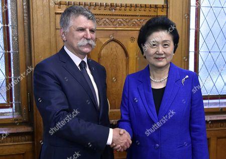 Laszlo Kover and Liu Yandong