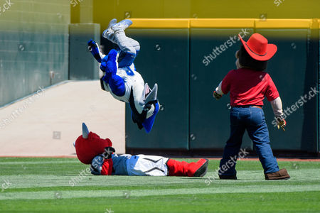 Stock Picture of Omaha, NE U.S. - Herbie Husker watches Billy Blue Jay flip over Durang during the mascot races during game 5 of the NCAA Men's College World Series between Florida State Seminole vs Cal State Fullerton Titans at the TD Ameritrade Park in Omaha, NE..Attendance: 17,229.Florida State won 6-4