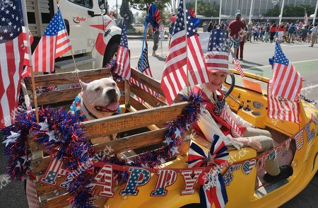 Jasper, a 10-year-old Pit Bull, shares a ride in an electric vehicle with Ellen Brennan during the 4th of July parade in Santa Monica, Calif. on . Decked out in red, white and blue, Californians waved flags and sang patriotic songs at Independence Day parades across the state