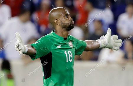 Costa Rica goalkeeper Patrick Pemberton reacts to his team's 1-0 win over Honduras during a CONCACAF Gold Cup soccer match in Harrison, N.J