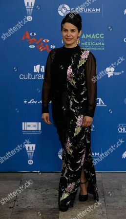Actress Arcelia Ramirez poses for photographers as she arrives for the 59th Ariel Awards at the Palace of Fine Arts in Mexico City, . The Ariel Awards recognize excellence in motion picture making, such as acting, directing and screen writing in Mexican cinema