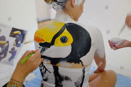 AMBEr Hill Gb Shooter Painted Animal Series For The Rio Olympics. Pics Show AMBEr Hill Painted As A Toucan. Gb Shooter AMBEr Hill Painted Animal Series For The Rio Olympics: AMBEr Hill Painted As A Toucan.