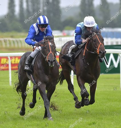 Stock Image of (L) Alkhalifa (Jim Crowley) wins The bet365 Novice Stakes from (R) Oliver Reed (Ryan Moore) at Newbury Racecourse on Saturday 22nd July 2017.