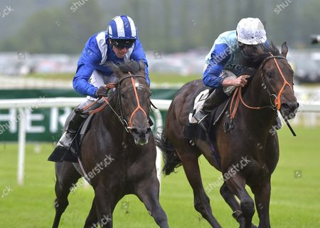 (L) Alkhalifa (Jim Crowley) wins The bet365 Novice Stakes from (R) Oliver Reed (Ryan Moore) at Newbury Racecourse on Saturday 22nd July 2017.