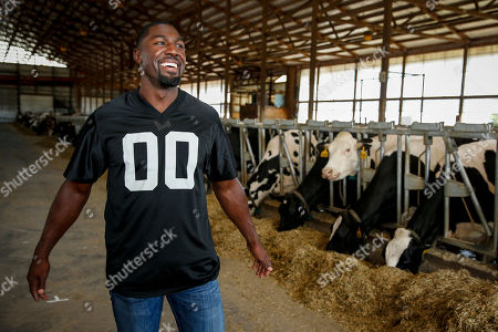 Former Minnesota Vikings wide receiver Greg Jennings spends time in the cow barn at Enchanted Dairy as part of his preparation for the Land O'Lakes Farm Bowl, in Little Falls, Minn. The Land O'Lakes Farm Bowl presented by GENYOUth will pit teams of current and former professional football players and Land O'Lakes farmers against each other in a series of on-farm experiences and light-hearted farm-themed challenges to demonstrate the skill, determination and grit required to succeed as a farmer today. Taking place Thursday, Feb 1, 2018 at the University of Minnesota, the event is designed to inspire the next generation of young leaders to consider careers in food and agriculture