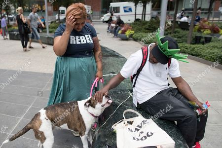 """Tanoopa Jaikaran, left, looks on as Jose Rosa, a Statue of Liberty ticket seller, pets Mimosa, a 9-year old pit bull mix during their walk in the Tribeca neighborhood of Manhattan. Jaikaran left a marketing job last year to start a dog-walking and pet-sitting business. In New York and elsewhere, pet-boarding rules have gotten new attention with the rise of apps. The popular Rover and a former rival, DogVacay, were among the top five highest-funded """"pet tech"""" start-ups in the last five years, according to CB Insights, which tracks venture capital"""
