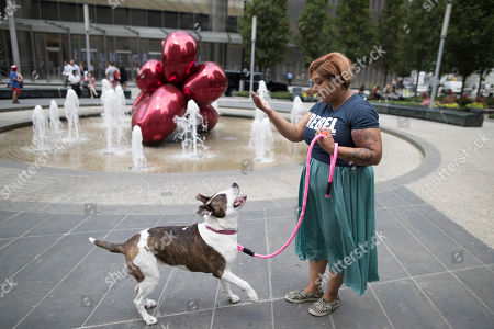 """Tanoopa Jaikaran demonstrates 9-year old pit bull mix Mimosa's obedience skills while out for a walk in the Tribeca neighborhood of Manhattan. Jaikaran left a marketing job last year to start a dog-walking and pet-sitting business. In New York and elsewhere, pet-boarding rules have gotten new attention with the rise of apps. The popular Rover and a former rival, DogVacay, were among the top five highest-funded """"pet tech"""" start-ups in the last five years, according to CB Insights, which tracks venture capital"""
