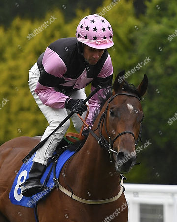 Mouchee ridden by Timmy Murphy goes down to the start  of The Bathwick Tyres EBF Maiden Stakes (Plus 10),  during Evening Racing at Salisbury Racecourse on 29th July 2017