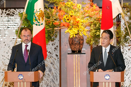 (L to R) Mexican Foreign Minister Luis Videgaray Caso and Japanese Minister for Foreign Affairs and Minister of Defense Fumio Kishida speak during a news conference at the Iikura guest house