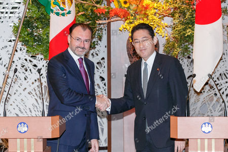 (L to R) Mexican Foreign Minister Luis Videgaray Caso and Japanese Minister for Foreign Affairs and Minister of Defense Fumio Kishida shake hands during a news conference at the Iikura guest house