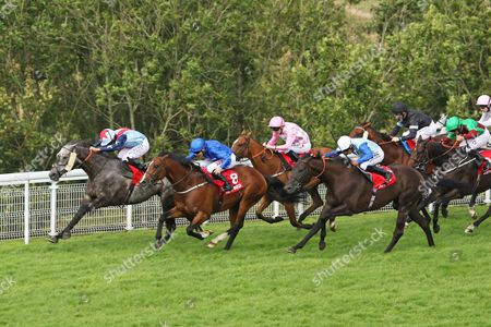Stock Picture of MASTER THE WORLD (far) ridden by Ryan Moore beating Birchwood (centre) & Tony Curtis in The Bonhams Thoroughbred Stakes (Group 3) at Glorious Goodwood