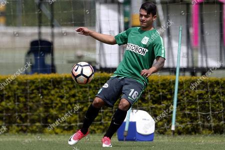 Stock Image of Ronaldo Lucena