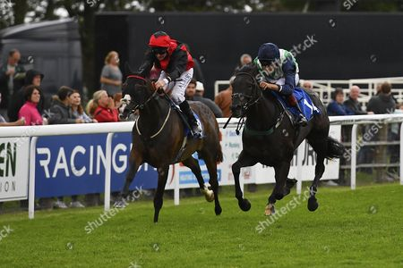 Stock Picture of Winner of Bathwick Tyres Salisbury Handicap (Class 6), Ocean Gale (green) ridden by George Wood and trained by Richard Price during Afternoon Racing at Salisbury Racecourse on 7th August 2017