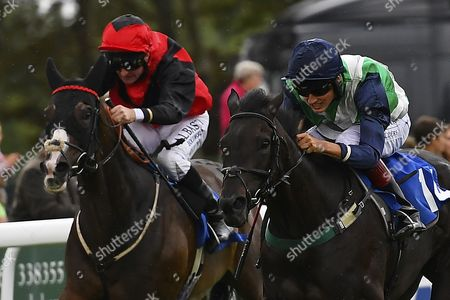 Winner of Bathwick Tyres Salisbury Handicap (Class 6), Ocean Gale (green) ridden by George Wood and trained by Richard Price during Afternoon Racing at Salisbury Racecourse on 7th August 2017