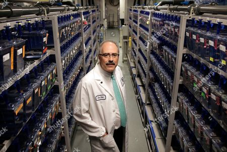 Researcher Leonard Zon, founder and director of the Stem Cell Program at Boston Children's Hospital, stands for a photograph among rows of containers holding about 300,00 zebrafish in a lab at the hospital, in Boston. Democratic Gov. Deval Patrick pushed through a $1 billion, 10-year life sciences initiative that helped pay for the stem cell program at the hospital. The zebrafish are used in stem cell research