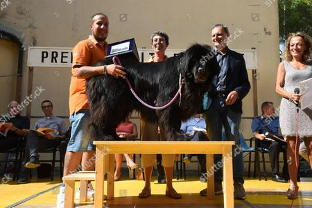 Editorial picture of Dog Loyalty Award, Camogli, Italy - 16 Aug 2017