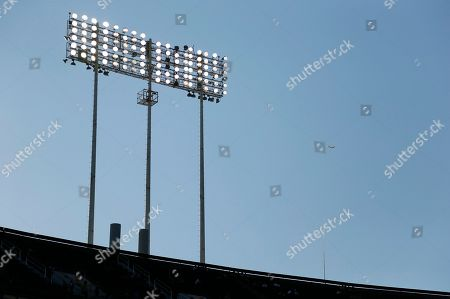 A vinyl kite, at right, used to ward off seagulls, flies over the top deck of the Oakland Coliseum before the start of a baseball game between the San Francisco Giants and Oakland Athletics in Oakland, Calif. Both Bay Area baseball franchises are experimenting with unconventional measures to deal with their own respective seagull situations. The kites in Oakland even have catchy nicknames chosen by fans: Falcon McFalconface and Scott Hattebird, after former A's star Scott Hatteberg
