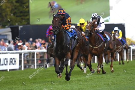 Stock Picture of Winner of The Bathwick Tyres Novice Auction Stakes (Plus 10) Bambino Lola ridden by Royston Ffrench and trained by Adam West  during Evening Racing at Salisbury Racecourse on 25th August 2017