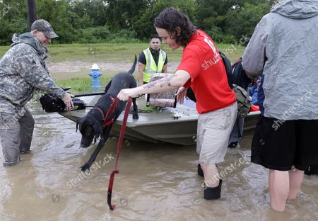 Scott Flower helps his dog Padfoot out of the boat being rescued from his home along Cypress Creek at Kuykendal 15 miles northwest of downtown Houston, Texas, USA, 28 August 2017. The areas in and around Houston and south Texas are experiencing record floods after more than 24 inches of rain after Harvey made landfall in the south coast of Texas as a category 4 hurricane, the most powerful to affect the US since 2004. Harvey has weakened and been downgraded to a tropical storm and is expected to cause heavy rain for several days.