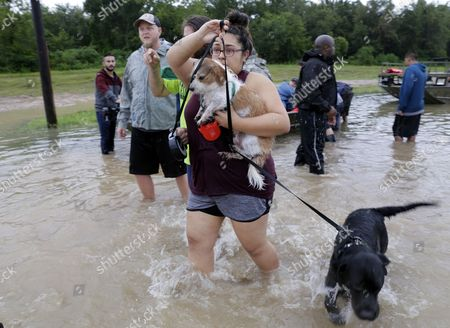 Sara Olivo wrangles her dogs off the boat after being rescued from her home along Cypress Creek at Kuykendal 15 miles northwest of downtown Houston, Texas, USA, 28 August 2017. The areas in and around Houston and south Texas are experiencing record floods after more than 24 inches of rain after Harvey made landfall in the south coast of Texas as a category 4 hurricane, the most powerful to affect the US since 2004. Harvey has weakened and been downgraded to a tropical storm and is expected to cause heavy rain for several days.