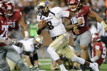 Montana State quarterback Chris Murray (8) runs with the ball during the second half of an NCAA college football game against Washington State in Pullman, Wash