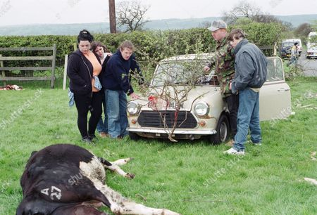 Ep 2091 Thursday 20th June 1996 Roy decides to go for a spin in Linda's car with Butch, Mandy, Scott and Kelly. Marcus says that he will race them to Hotten on his bike. Roy tries to race Marcus through country lanes, but loses control of the mini and crashes into a field on Emmerdale Farm land. Jack hears a noise and goes racing after them. Roy has killed a cow. He drives off leaving it there for Jack to find - With Roy Glover, as played by Nicky Evans, Mandy Dingle, as played by Lisa Riley ; Butch Dingle, as played by Paul Loughran ; Scott Windsor, as played by Toby Cockerell ; Kelly Windsor, as played by Adele Silva.
