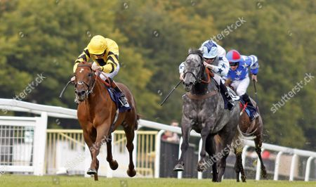 WAHAAB (left, Timmy Murphy) beats CHAMPAGNE BOB (right) in The CSP Handicap Chepstow