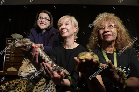 Australia's Minister for families and children Jenny Mikakos (L) and Museums Victoria CEO Lynley Marshall (C) along with tour guide Victoria Barnett pose for photographs with lizards at the 'Museum Inside Out' exhibition launch in the Melbourne Museum, in Melbourne, Victoria, Australia, 12 September 2017. The Museum Inside Out exhibition will showcase the museum's collections like never before from 23 December 2017 through 11 February 2018.
