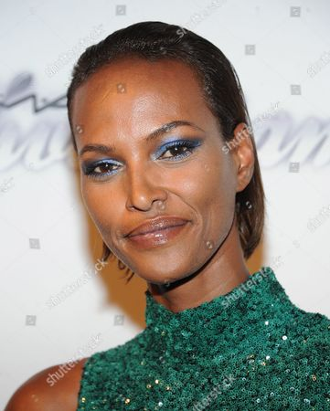 Stock Image of Yasmin Warsame attends the amfAR Inspiration Gala at the The Plaza Hotel on in New York