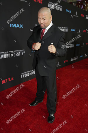 Stock Image of Woon Young Park seen at the Los Angeles Premiere of Netflix original film 'Crouching Tiger, Hidden Dragon: Sword of Destiny' at AMC Universal Citywalk Stadium 19, in Universal City, CA
