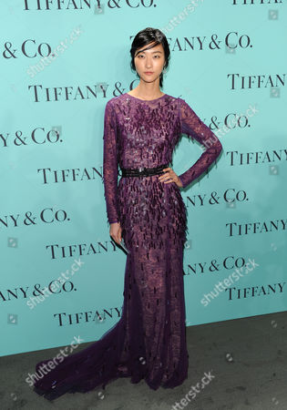 Stock Image of Model Ji Hye Park attends the Tiffany & Co. Blue Book Ball at Rockefeller Center on in New York