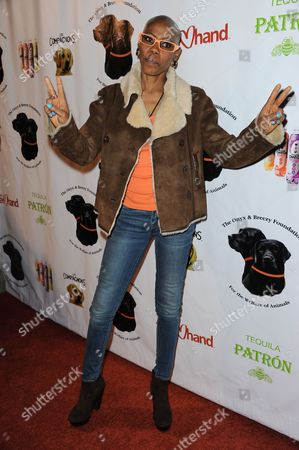 """Debra Wilson arrives at the """"Saving Tails"""" event honoring songwriter Diane Warren at a private residence on in Los Angeles"""