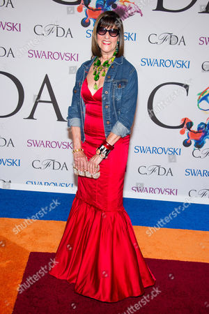 Kay Unger attends the CFDA Fashion Awards on in New York